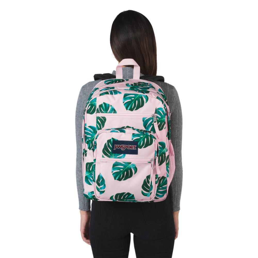 luxury a few days away new york JanSport Big Student Backpack Monstera Palm Leaves ...